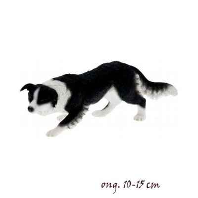 Chien Border collie LP14277