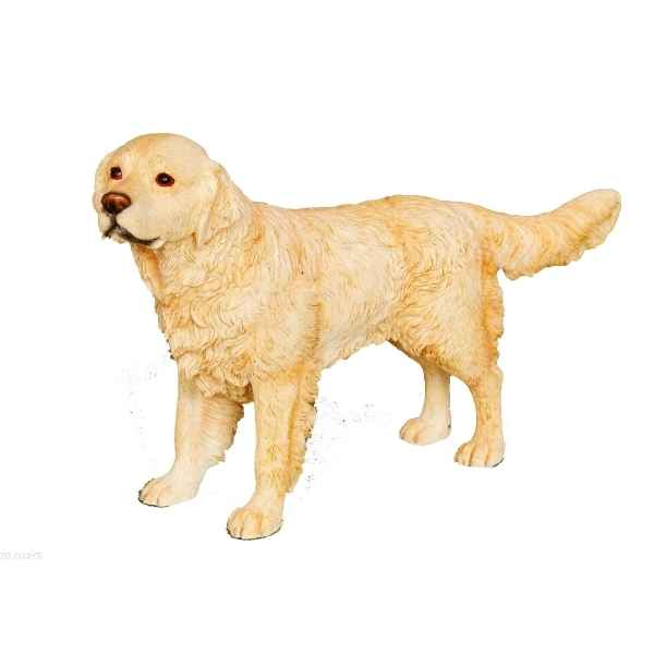 Chien Golden Retriever LP14279