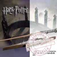 Harry potter presentoir eclair pour baguette Noble Collection -nob07771