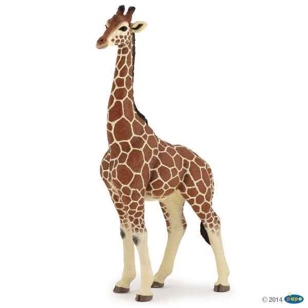 Figurine Girafe male Papo -50149