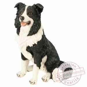 Border collie gm assis 51 cm Riviera system -200363