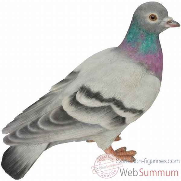 Pigeon colombin 20 cm Riviera system -200385