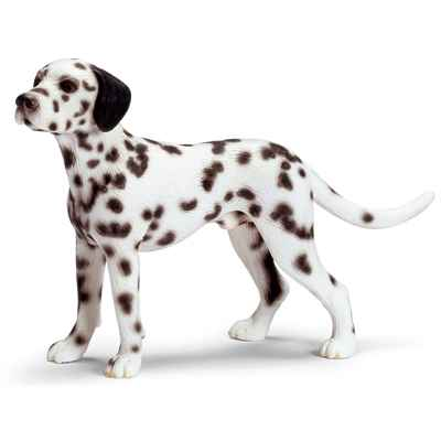 Video schleich-16346-Dalmatien male echelle 1:12
