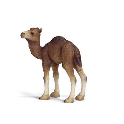 Video schleich-14356-Figurine bebe Dromadaire