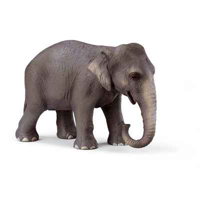 Video schleich-14344-Figurine Elephant de l'Inde femelle