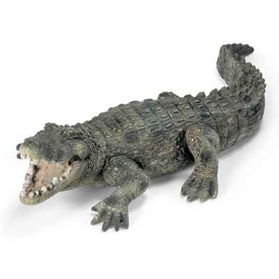 Video schleich-14378-Crocodile