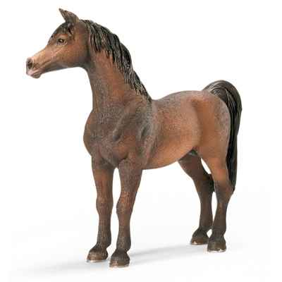 Video schleich-13629-Etalon Arabe
