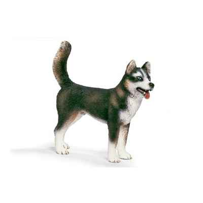 Video schleich-16371-Husky male