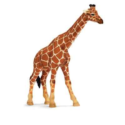 Video schleich-14320-Figurine Girafe femelle