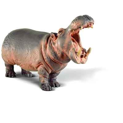 Video schleich-14132-Figurine Hippopotame male
